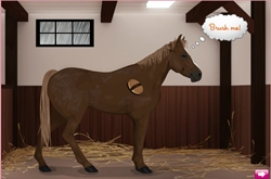 Own horse dress-up